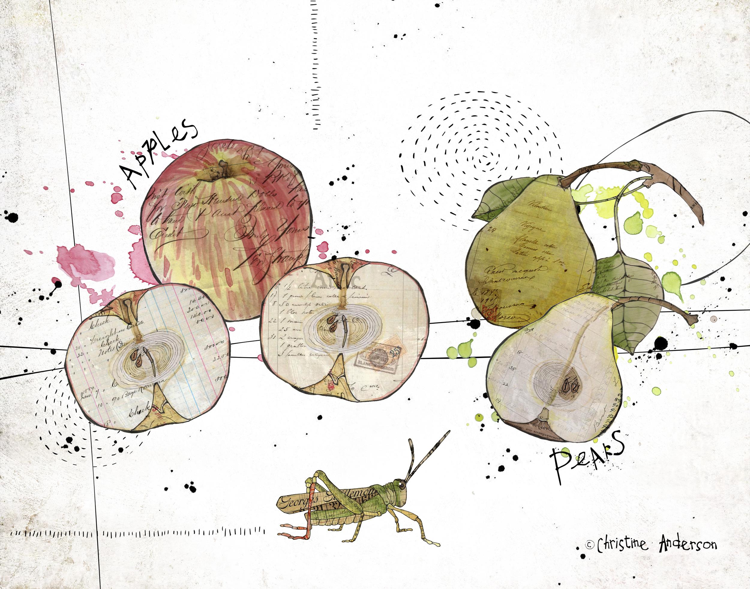 PB apples pears 11x14 for print.jpg