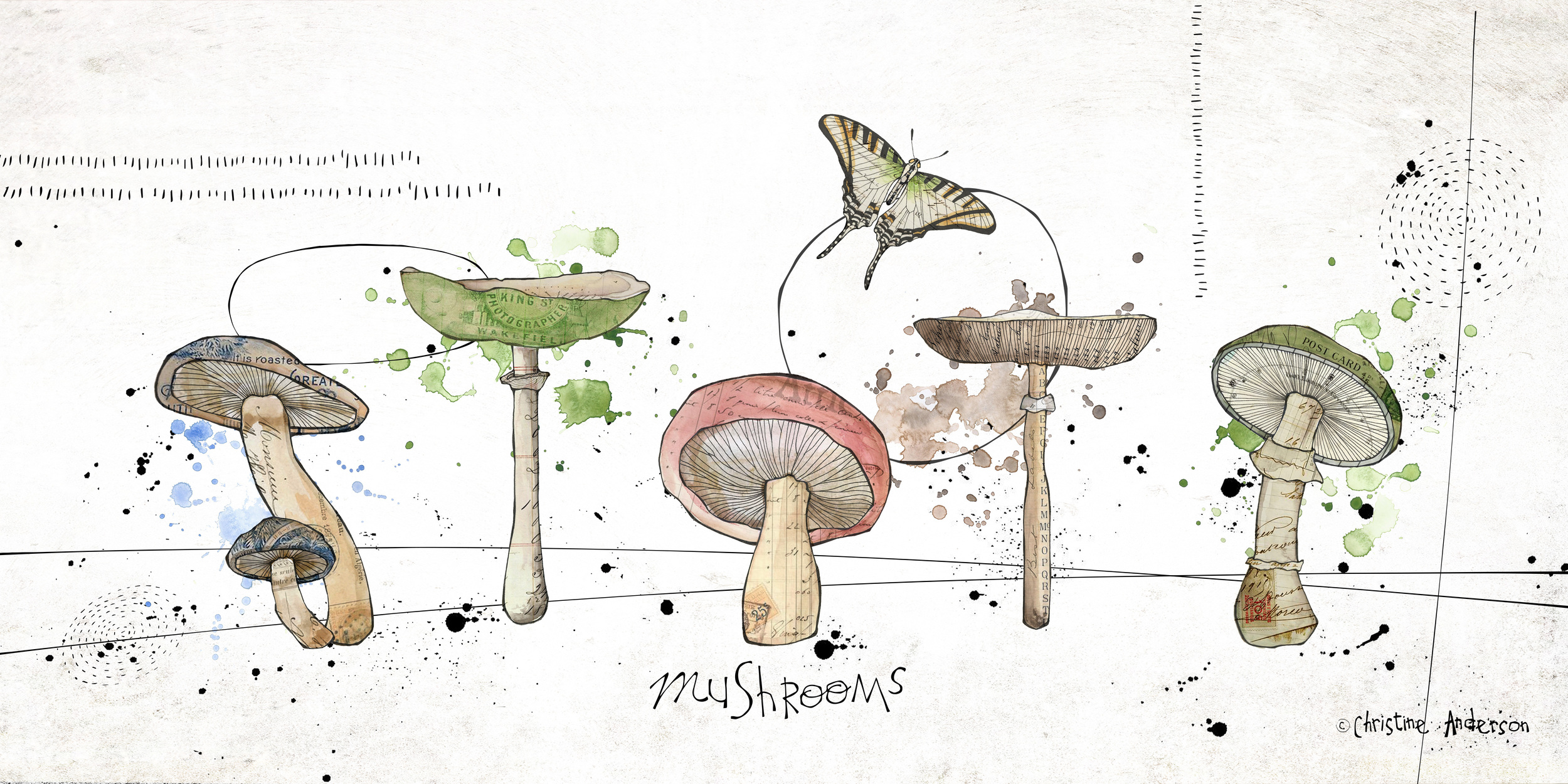 PB mushrooms 10x20 for print.jpg