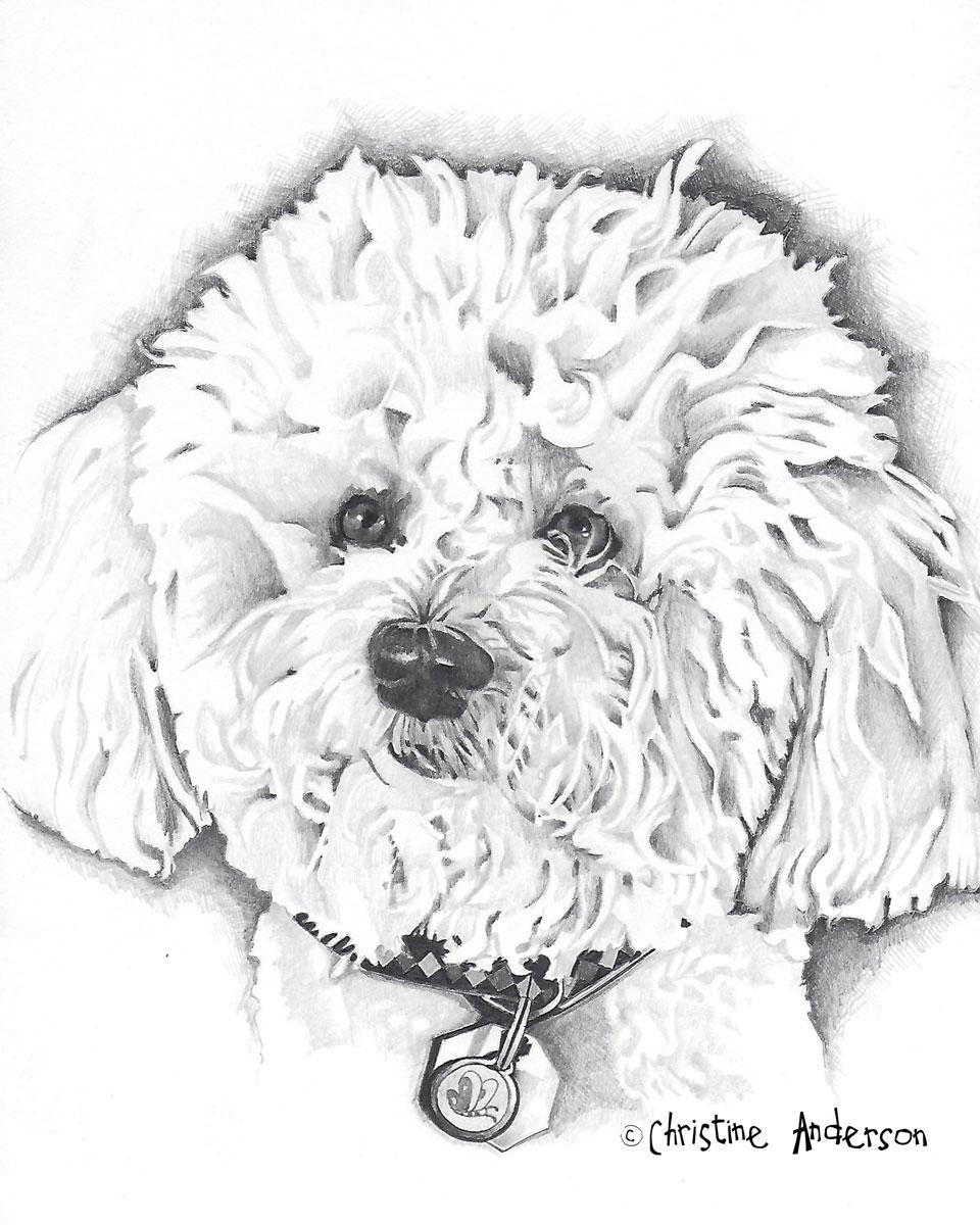 Carries-dog-for-print.jpg