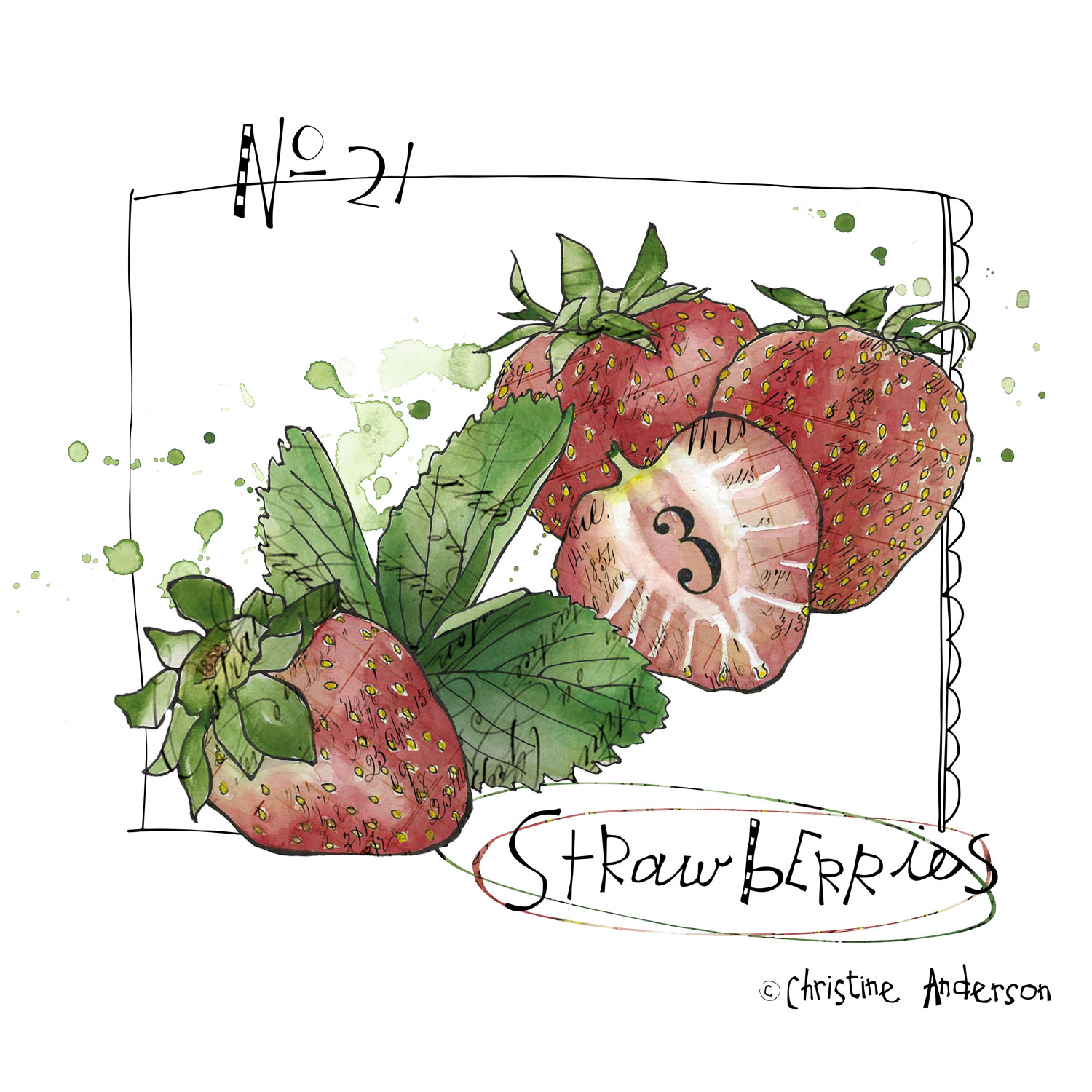 strawberries-day-21.jpg