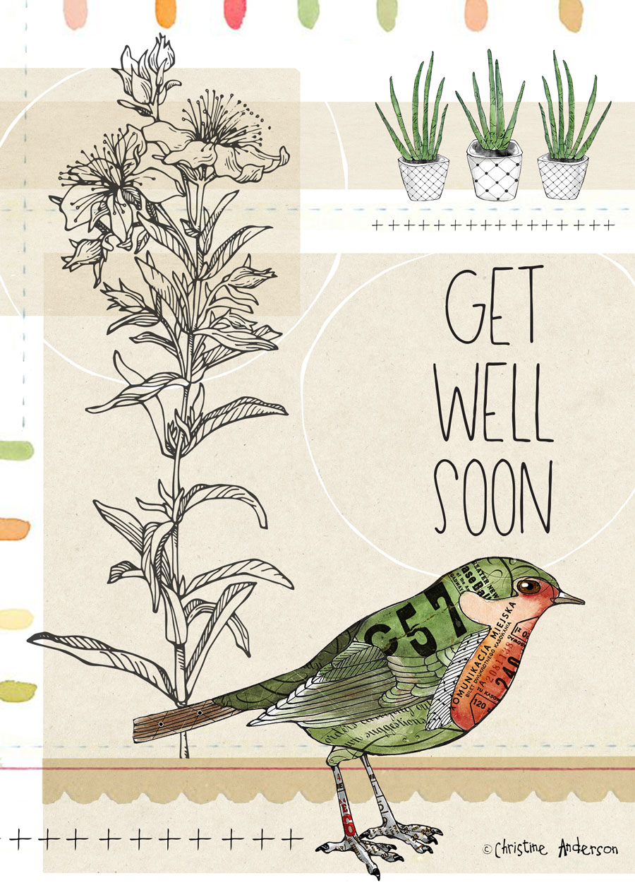 Bird-with-plants-card.jpg