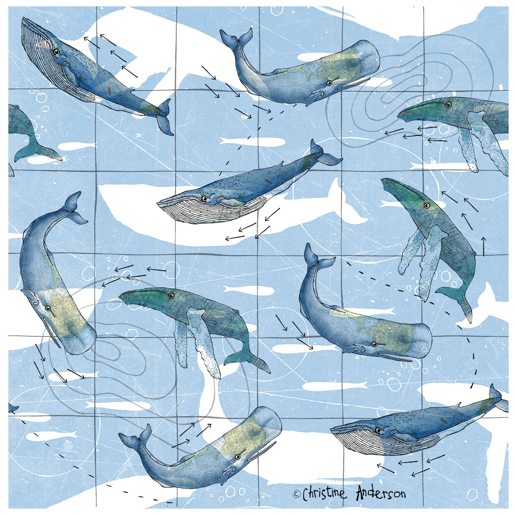 Whale-blue-white-double-pattern.jpg