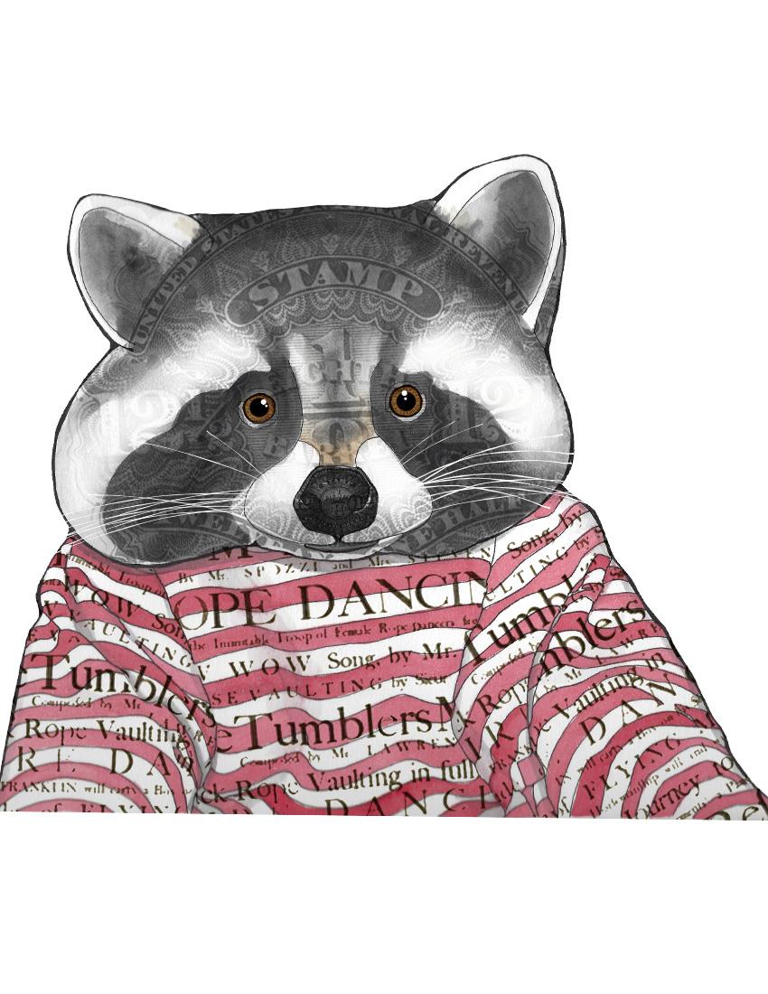 CA Raccoon texture.jpg
