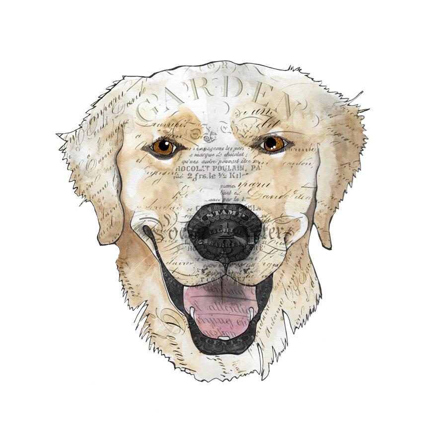 John's-dog-3-12x12-canvas.jpg