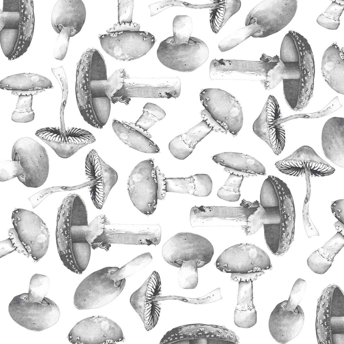 Christine Anderson Woodlands Mushroom pattern.jpg