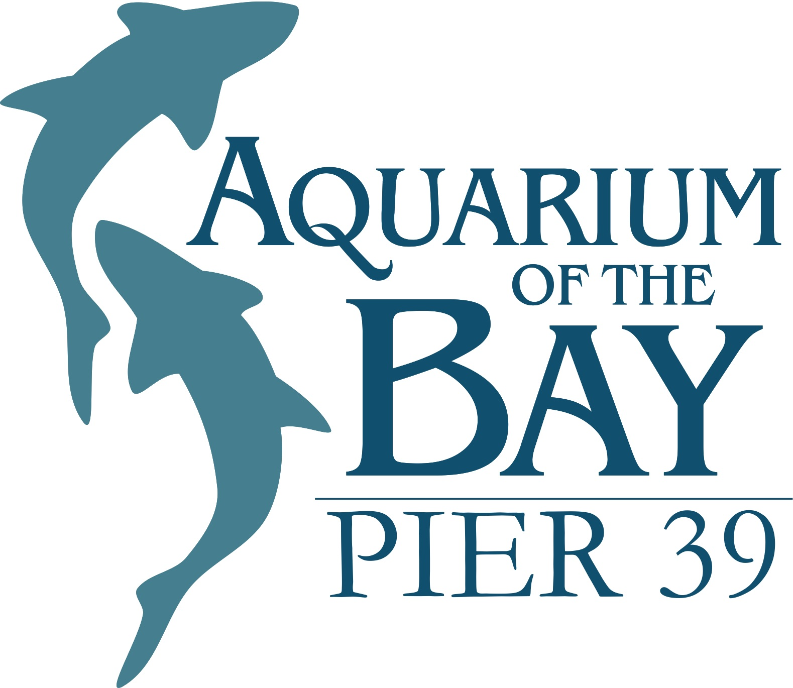 Fisherman's Wharf Treasure Hunt - Aquarium of the Bay