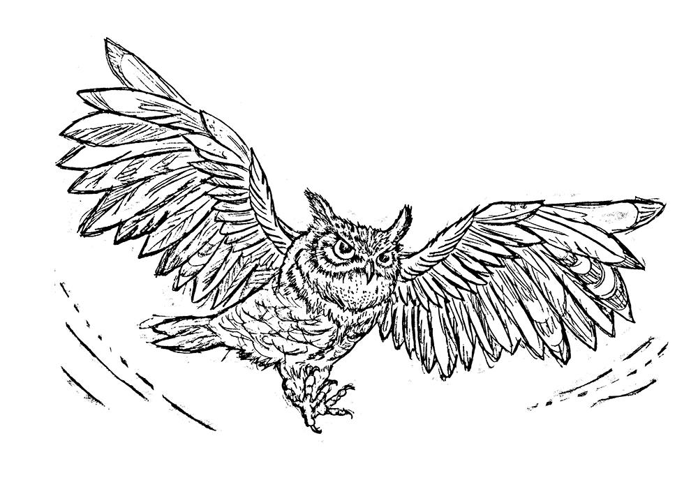 horned-owl-linocut-sketch-tian-gan.jpg