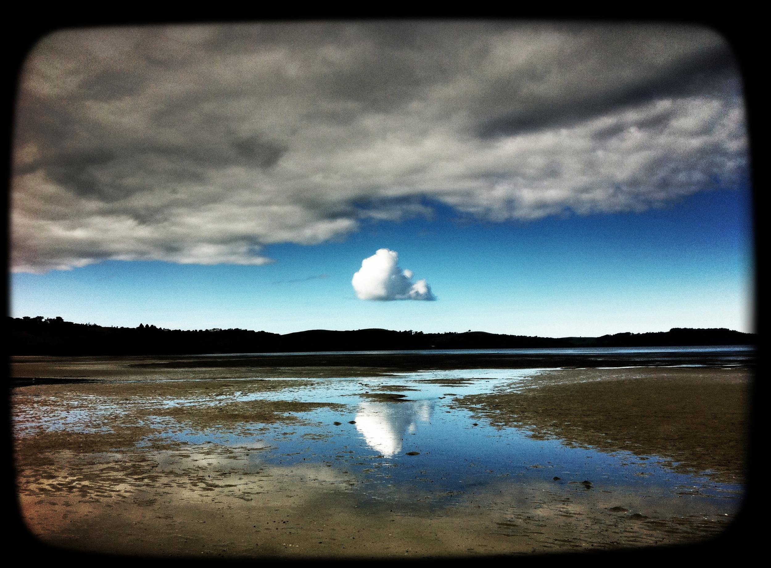 White_Cloud.jpg