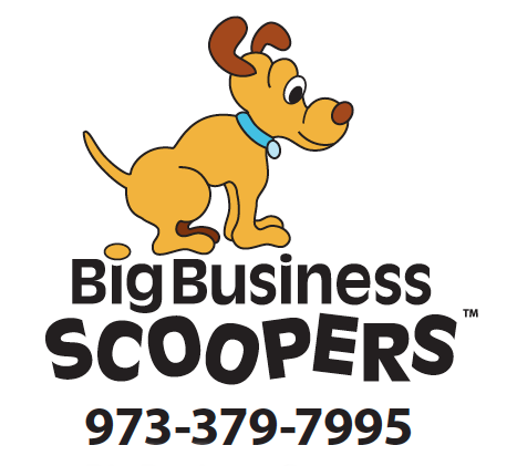 Featured Page: Big Business Scoopers
