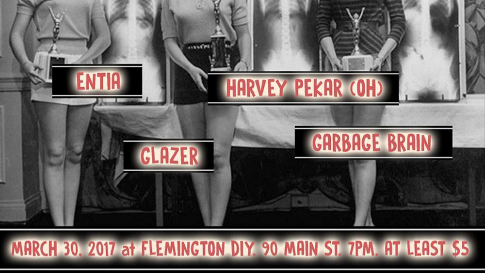 FLEMINGTON DIY SHOW (March 30, 2017)   Punk, Hardcore, Alternative   Flemington, NJ   Posted Sunday, March 5, 2017