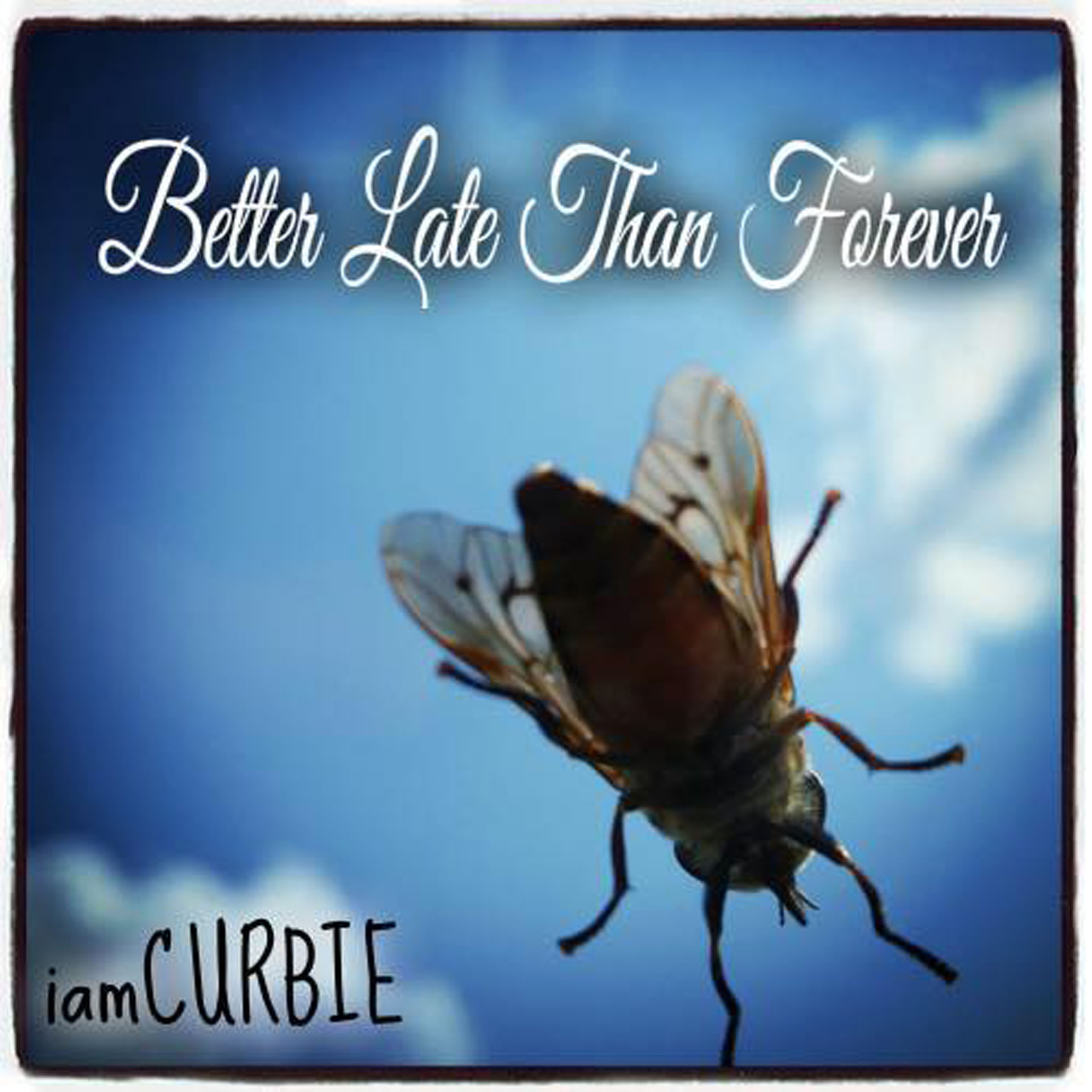 I Am Curbie Better Late Than Forever abum cover.jpg