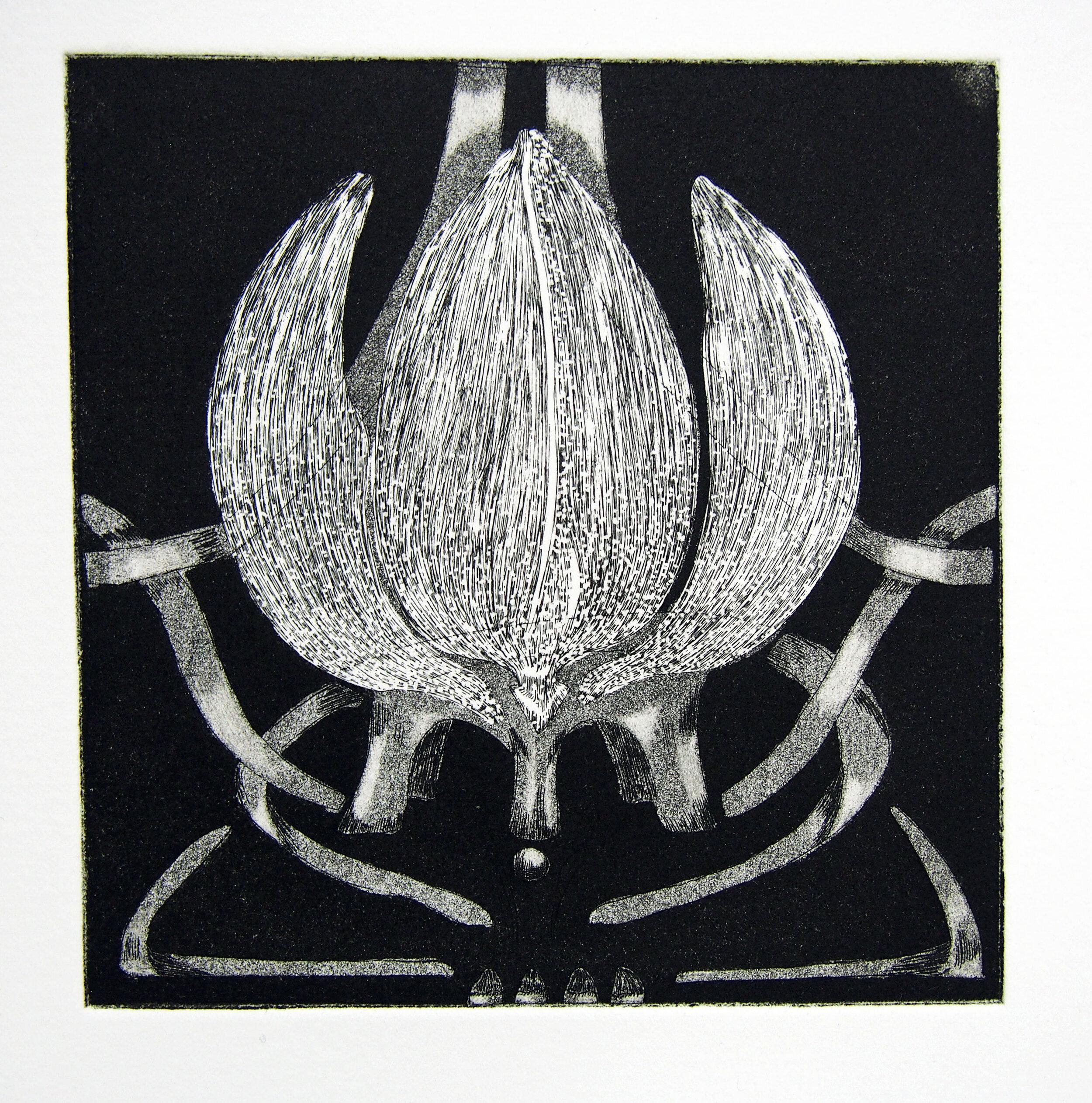 Locked Lotus