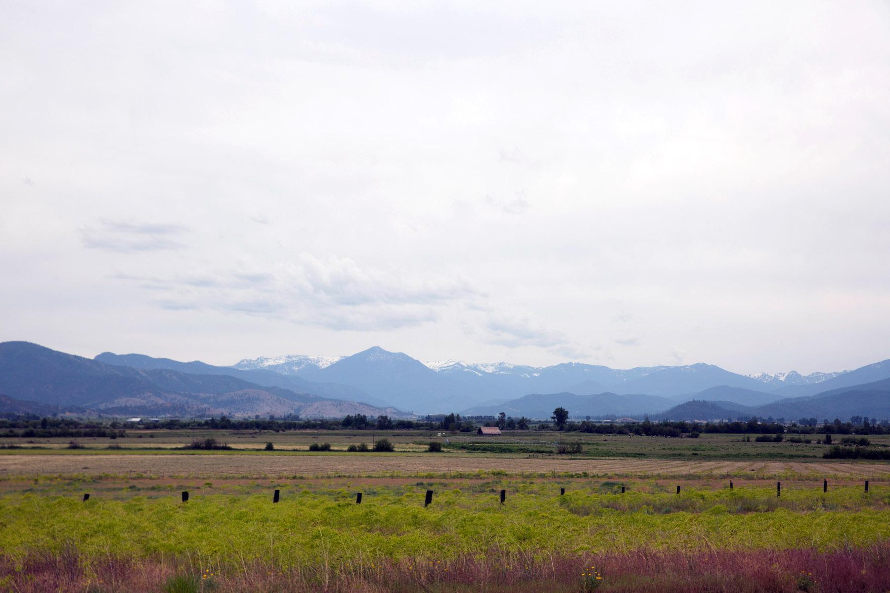 The Scott Valley