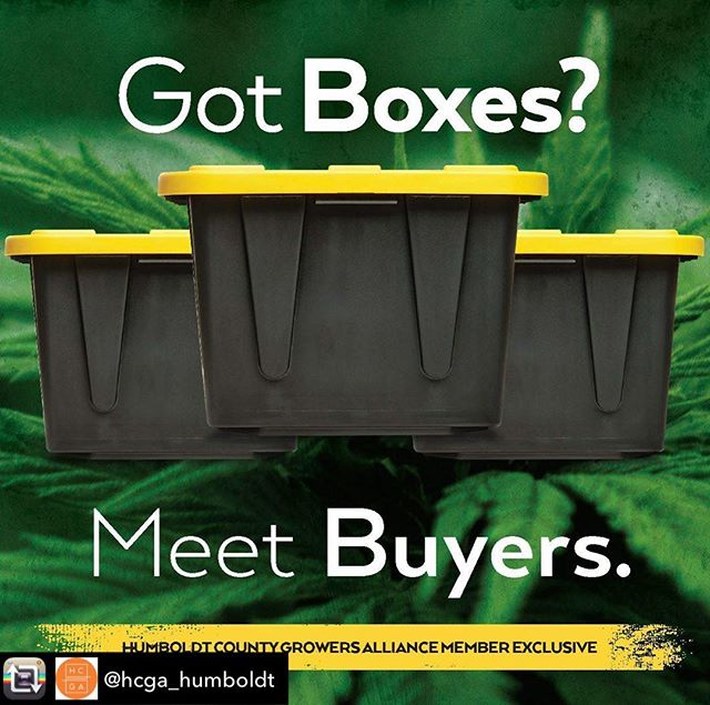 Repost from @hcga_humboldt using @RepostRegramApp - Two Exclusive HCGA Member Events  Friday, November 8, 2019 • Eureka, CA:  visit hcga.co for more info.  Business-to-Business trade show specifically designed to facilitate the trade of licensed cannabis products from Humboldt across the state of California. #humboldtfarmers #distros #manufacutres #retail #ligitweed #cleanweed #makeconnections #buildreputations #whodoyouwantomeet?#hcgamembersonly #exclusive#cannabiscommunity#cannabisindustry#supportyourfarmer#plantmedicine