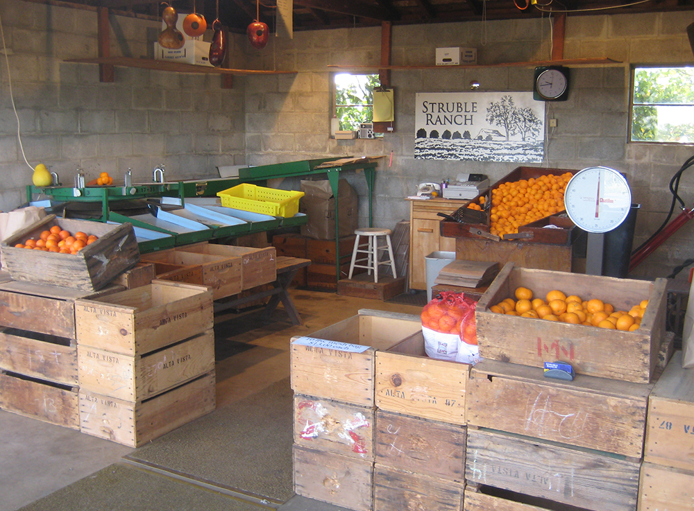 Struble's have been selling mandarin from the farm since 1961.