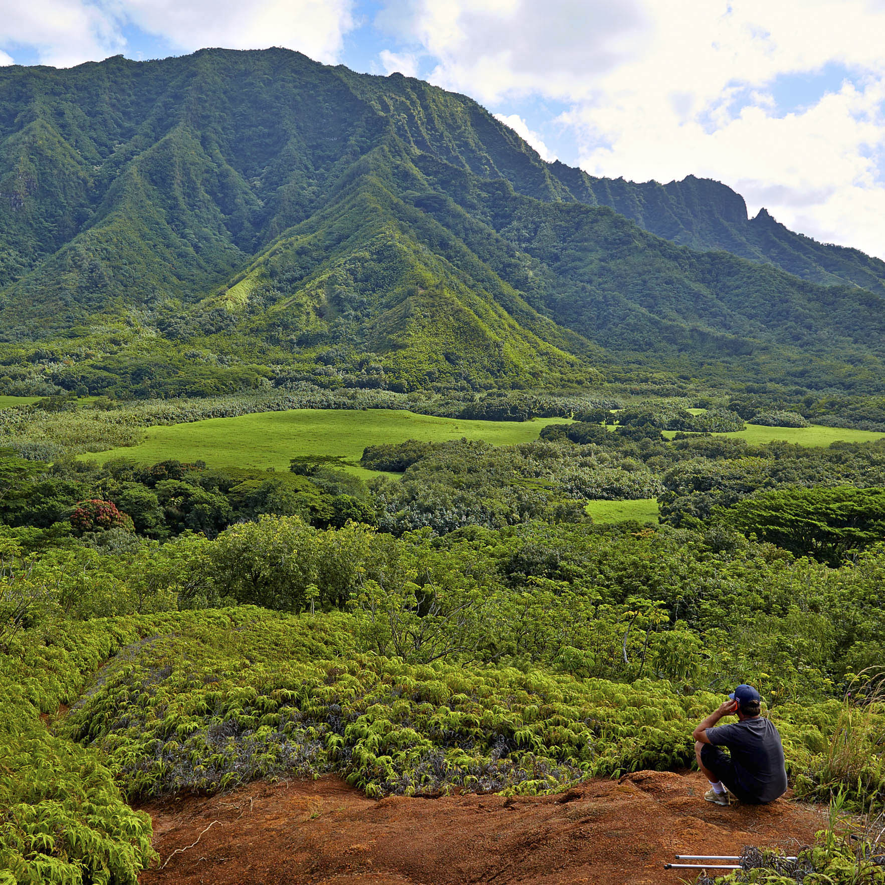 On location in Hawaii.