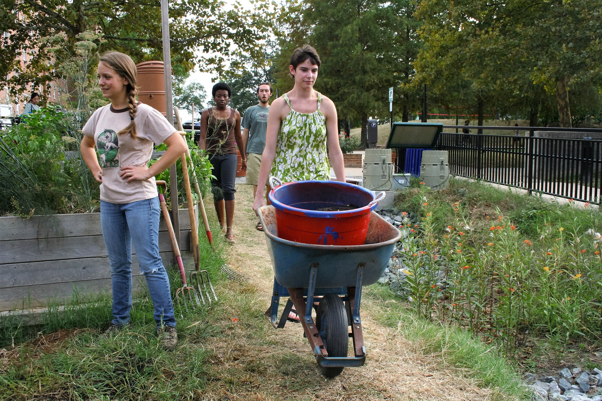 Meredith Epstein, left, the faculty adviser of the Public Health Garden and a teacher of sustainable agriculture at the University of Maryland oversees volunteers as they transport compost to the hillside of the garden on Sept. 28, 2015. Epstein said she has been with the club since 2013 and she runs all of the work hours at the garden.