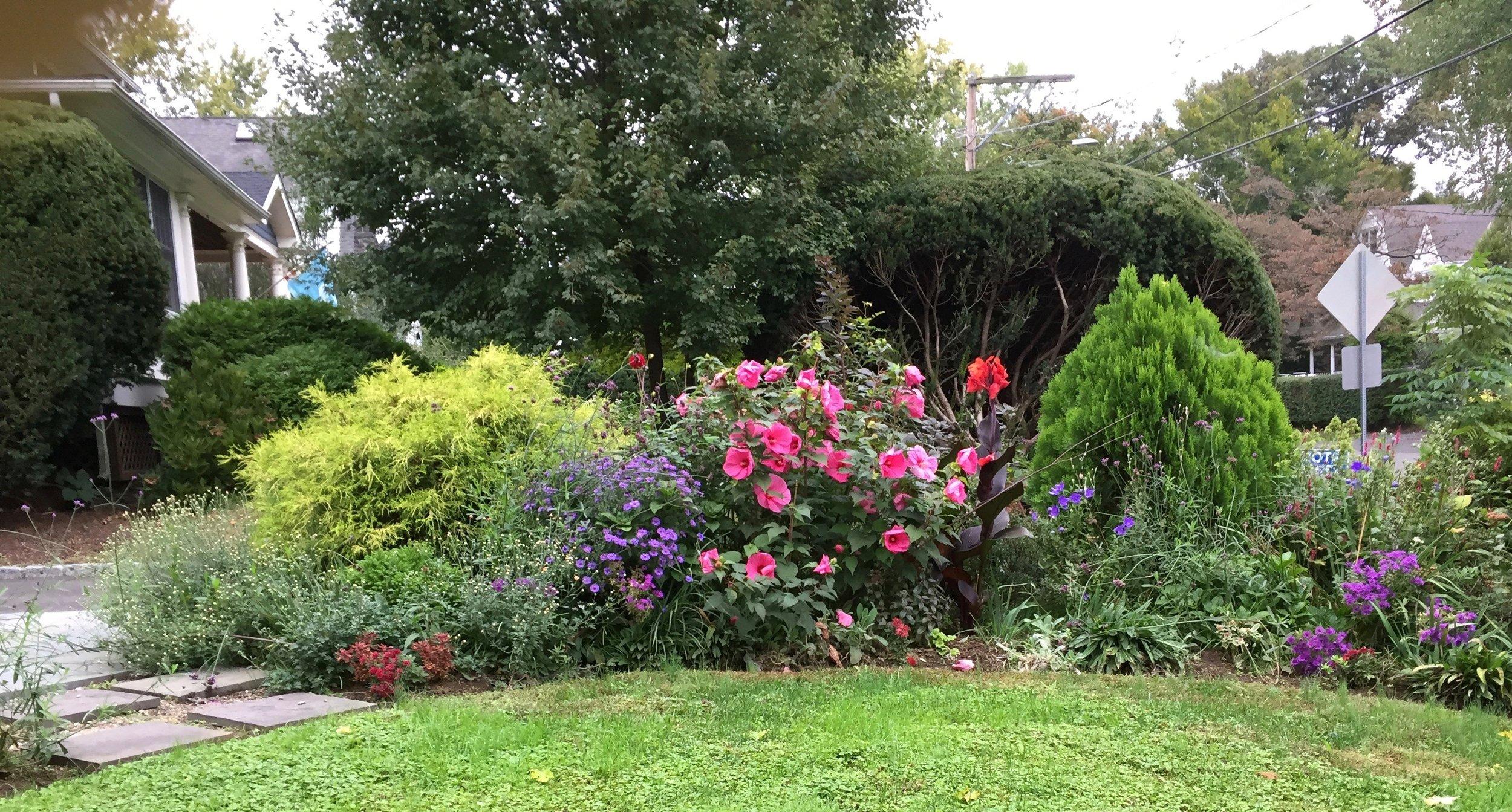 My front garden in October