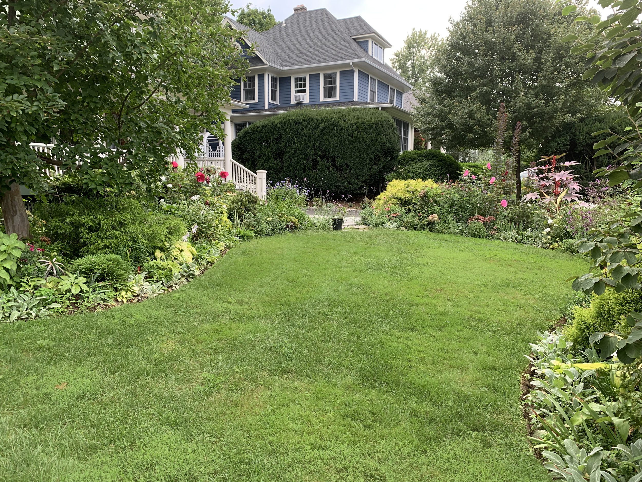The shape and the edge make it look better. The grass hasn't been mowed in a week, so uneven heights don't help.
