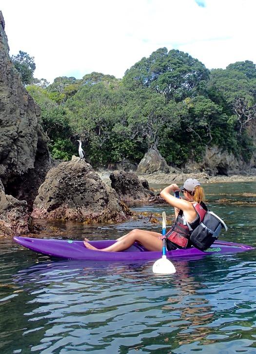 kayak whanarua 2.jpeg