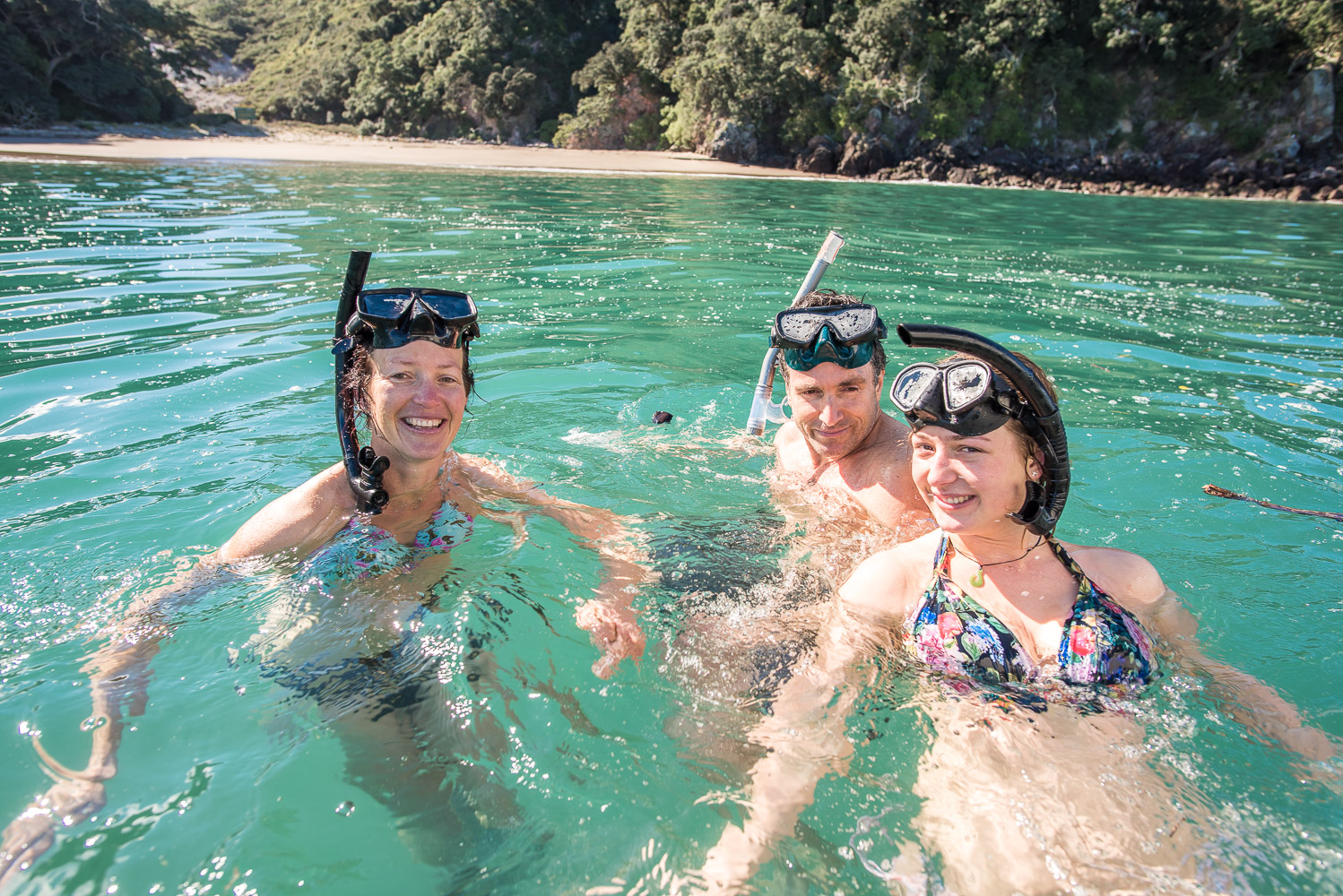 Whale Island Snorkelling Adventure   Snorkel Whale Island's pristine clear bays.   Read More