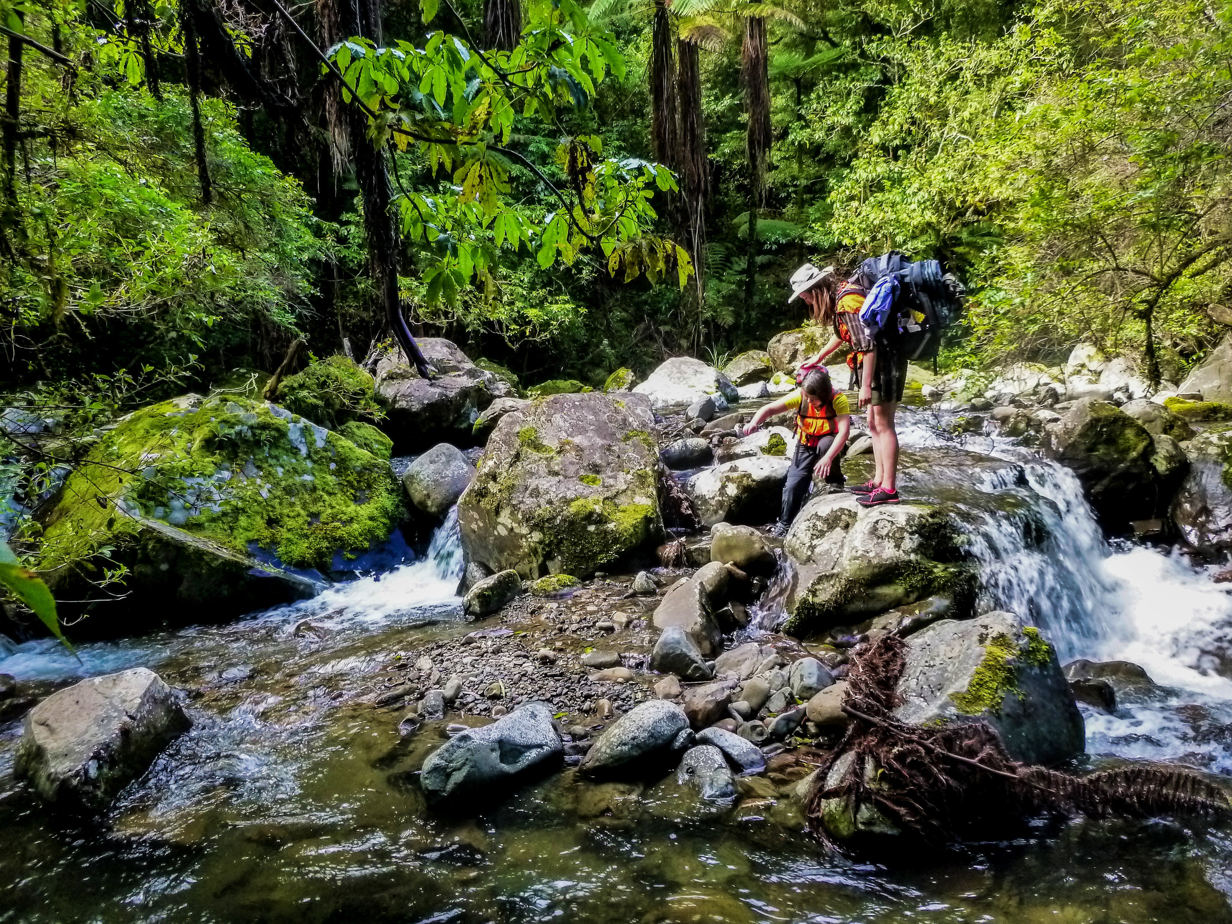Waioeka Two Day Hiking Expedition   Take a two day hiking expedition into the wildnerness of the Eastern Bay of Plenty, through the rugged Waioeka Gorge near Opotiki.   Read More