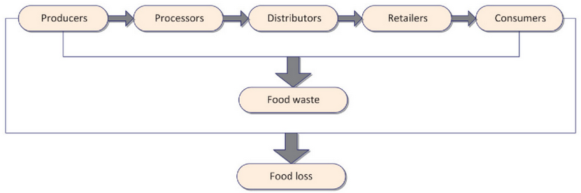 Figure 1.  Stages of food supply chain at which food waste and food loss occur (FAO, 2013)