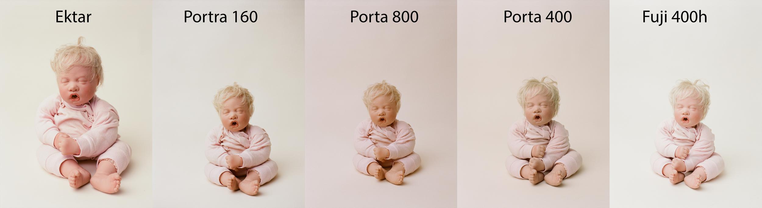 Film comparison by Sandra Coan