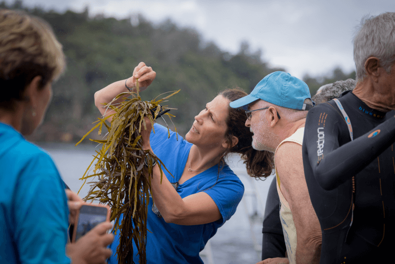 Professor Adriana Verges and a volunteer deciphering the sex of a crayweed individual