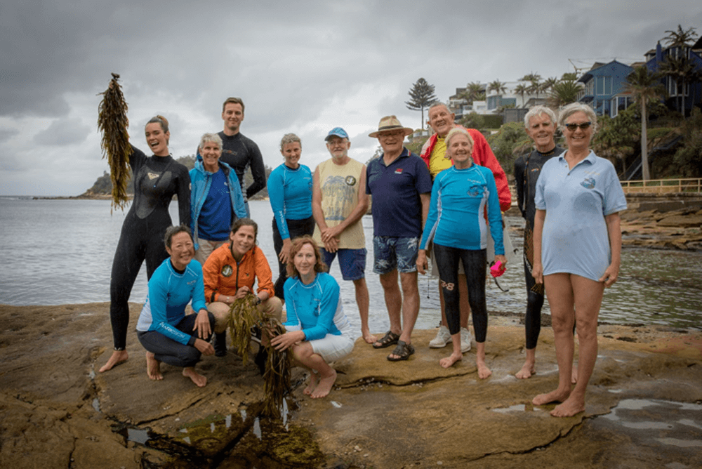 Some of the volunteers that joined the Operation Crayweed team at Cabbage Tree Bay