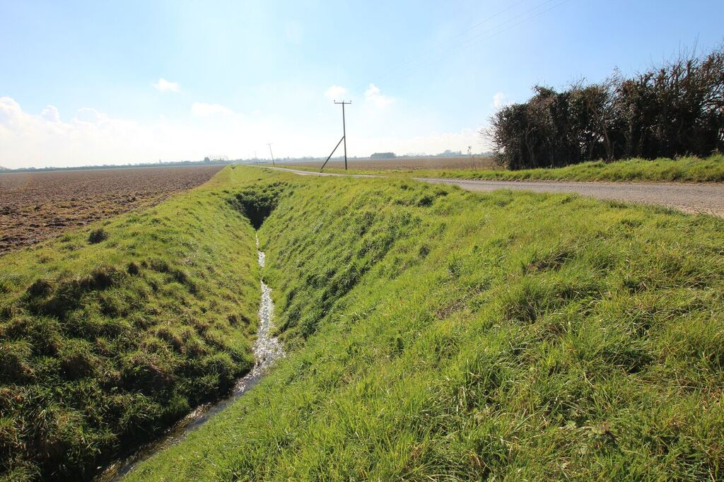 Ditch (S) from Terrington Marsh