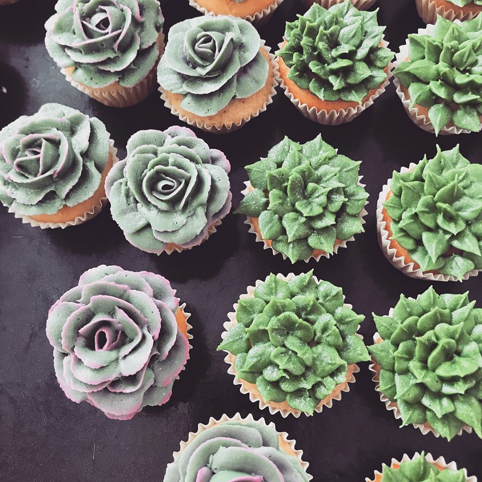 Mini succulent cupcakes, £1.80 each, minimum order 24.
