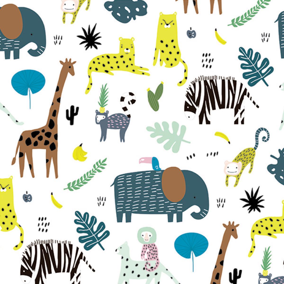 Chouette safari