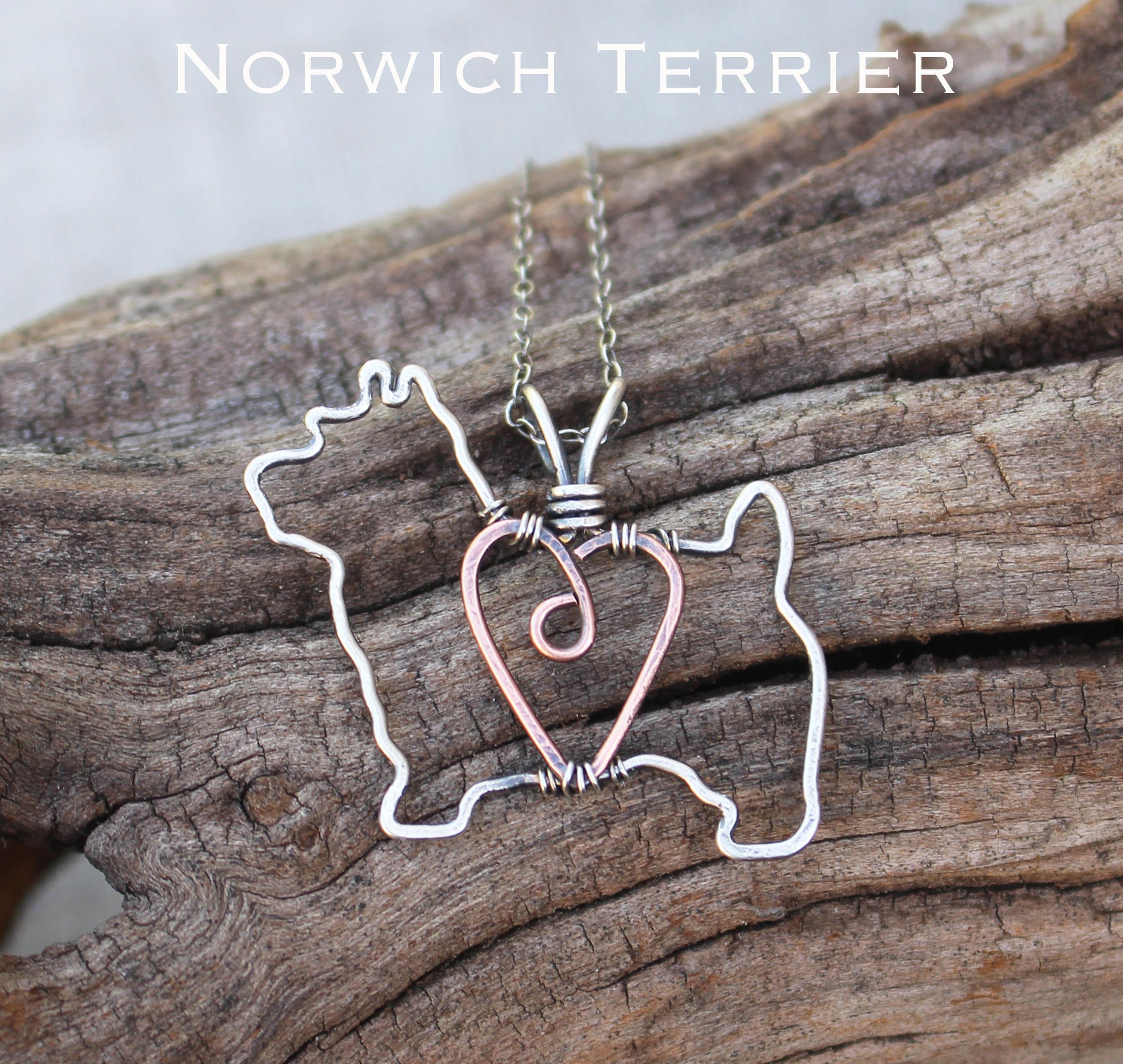 norwich terrier.jpg