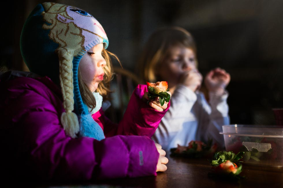 Colorful image of two girls eating strawberries in strong window light. One is wearing an Elsa hat from the movie Frozen.