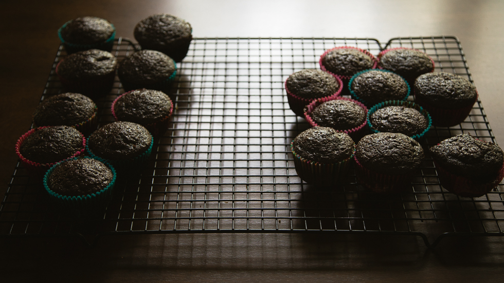 chocolate cupcakes cooling by a window.