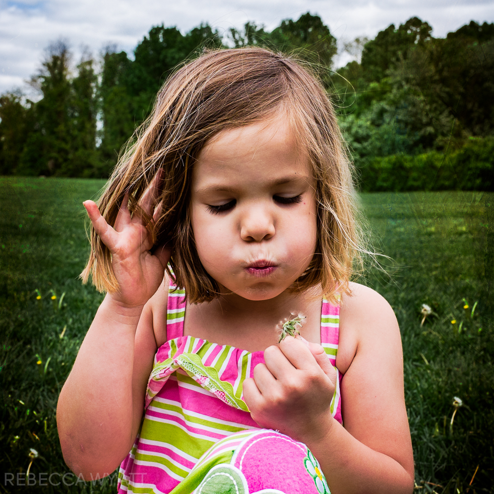 Girl in a field blowing dandelions.