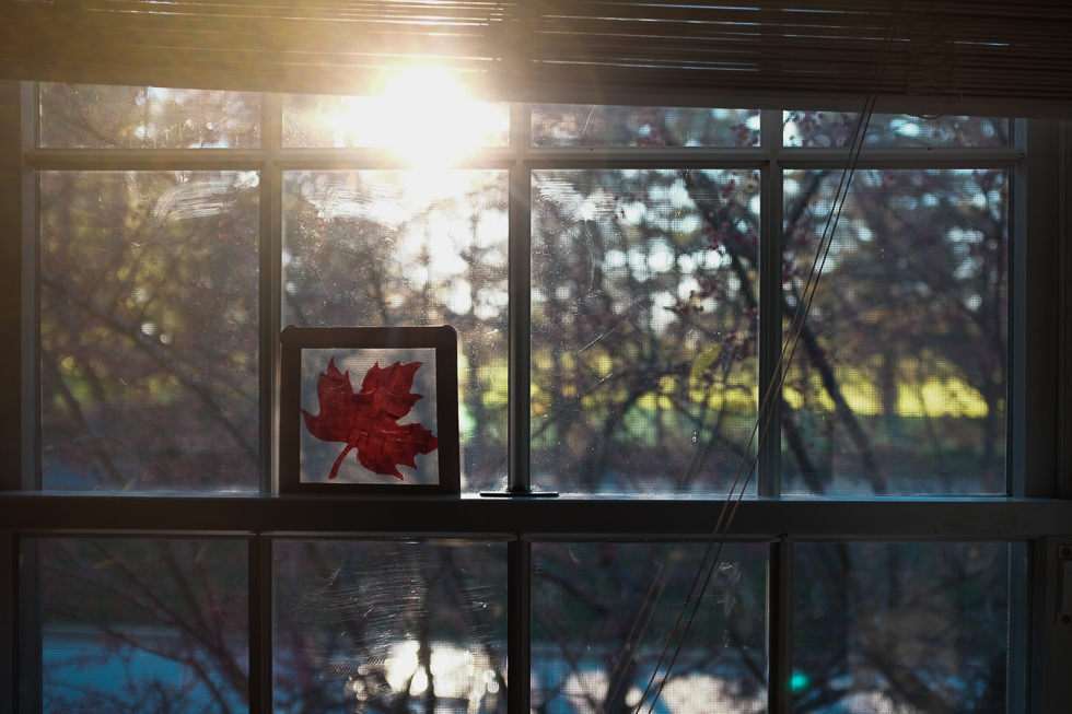 sunset streaming through the kitchen window