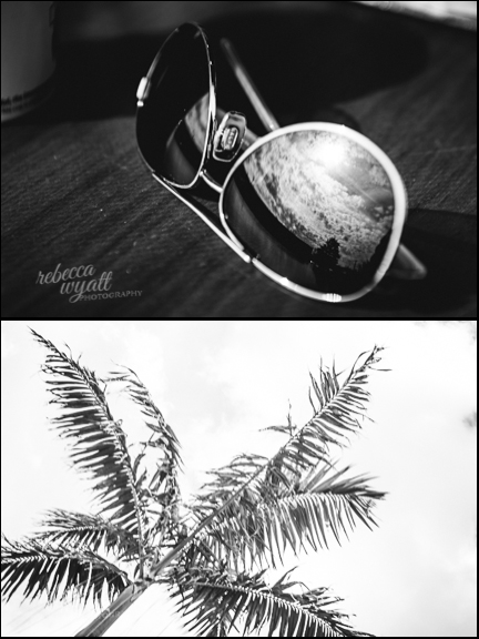 sunglasses and palm trees