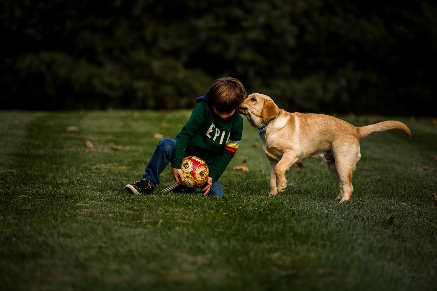 young boy throwing a ball with dog-13.jpg