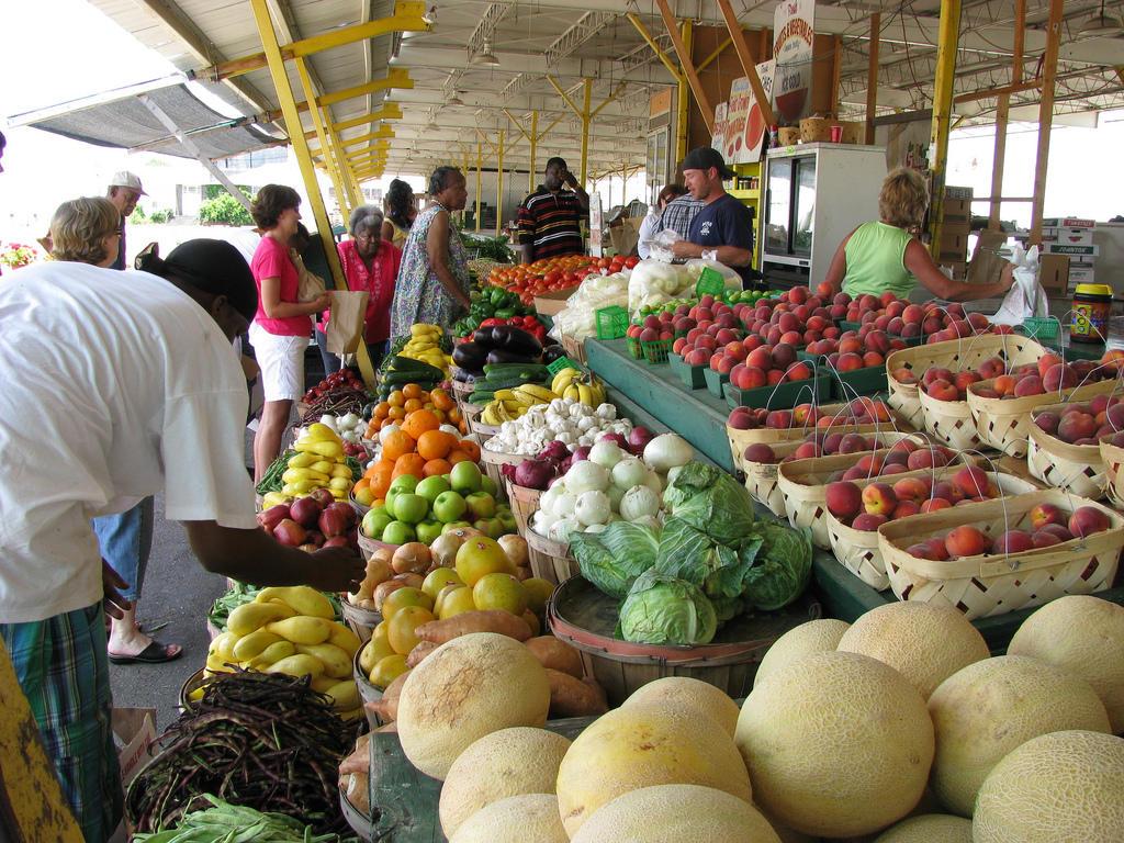 FarmersMarket_NatalieMaynor.jpg