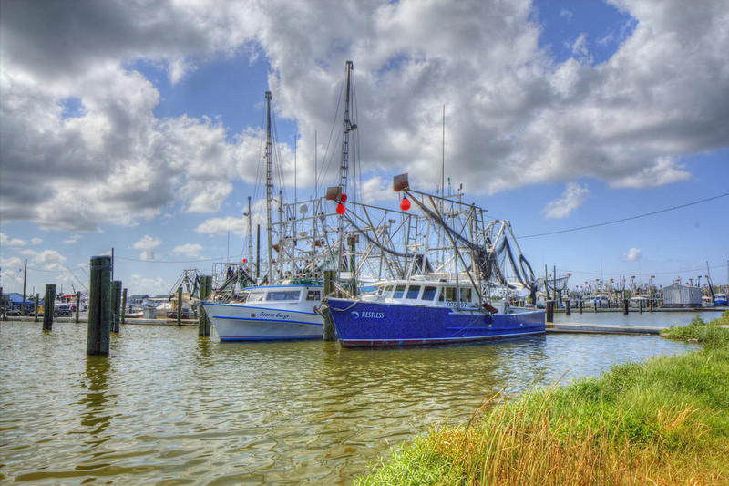 Venice_Shrimp_Boats.jpg