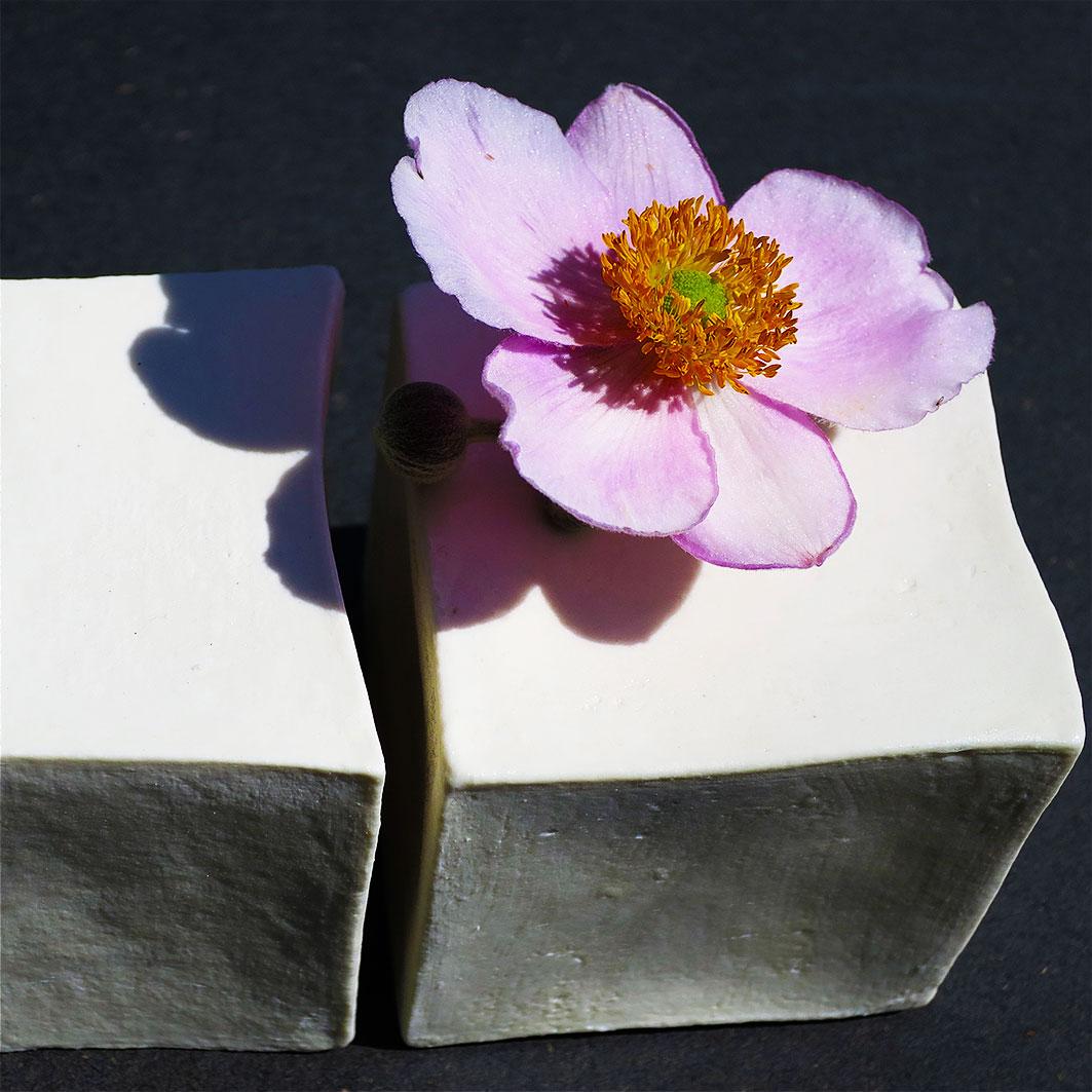 Paperclay-21.jpg