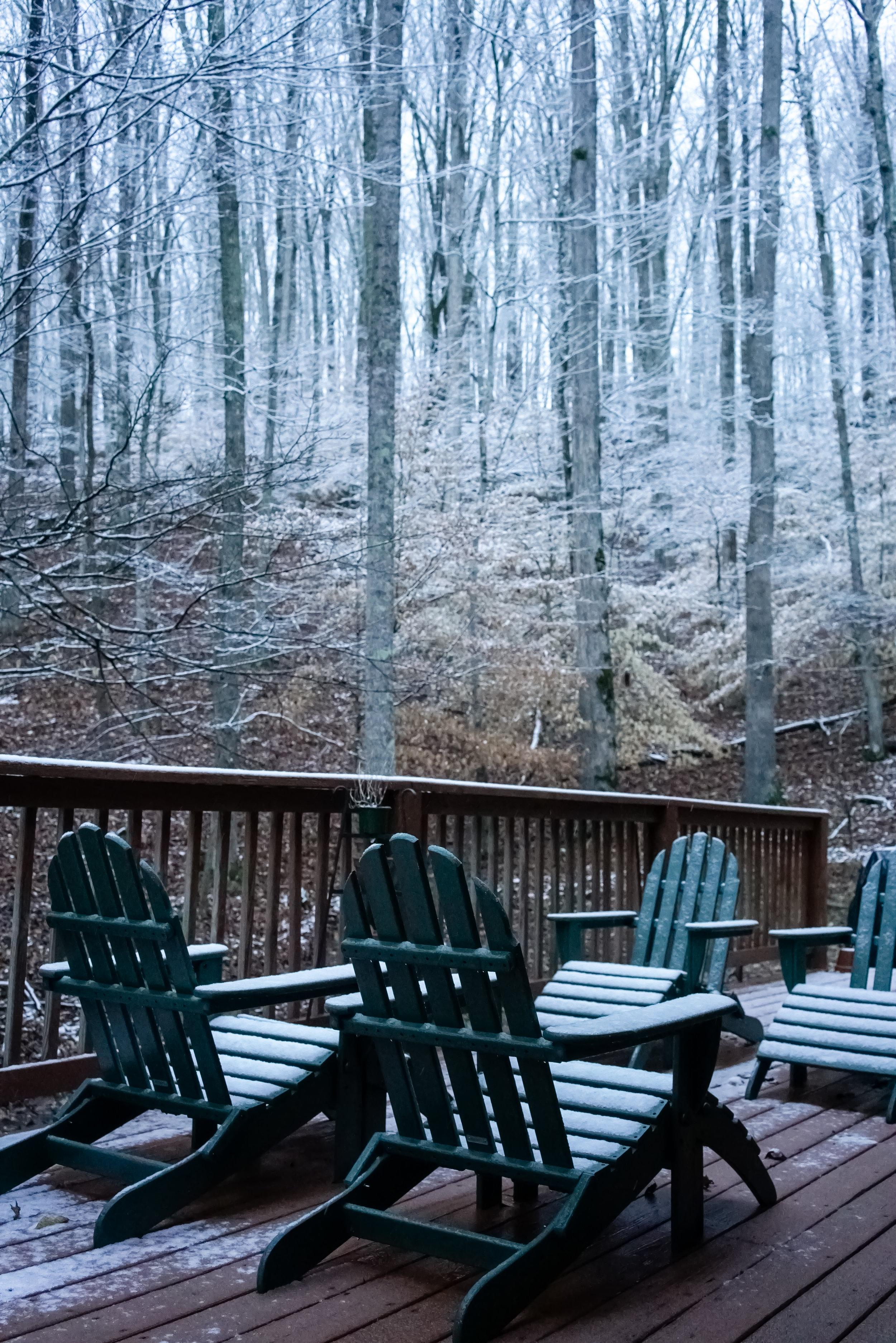 Snow-03810.jpg
