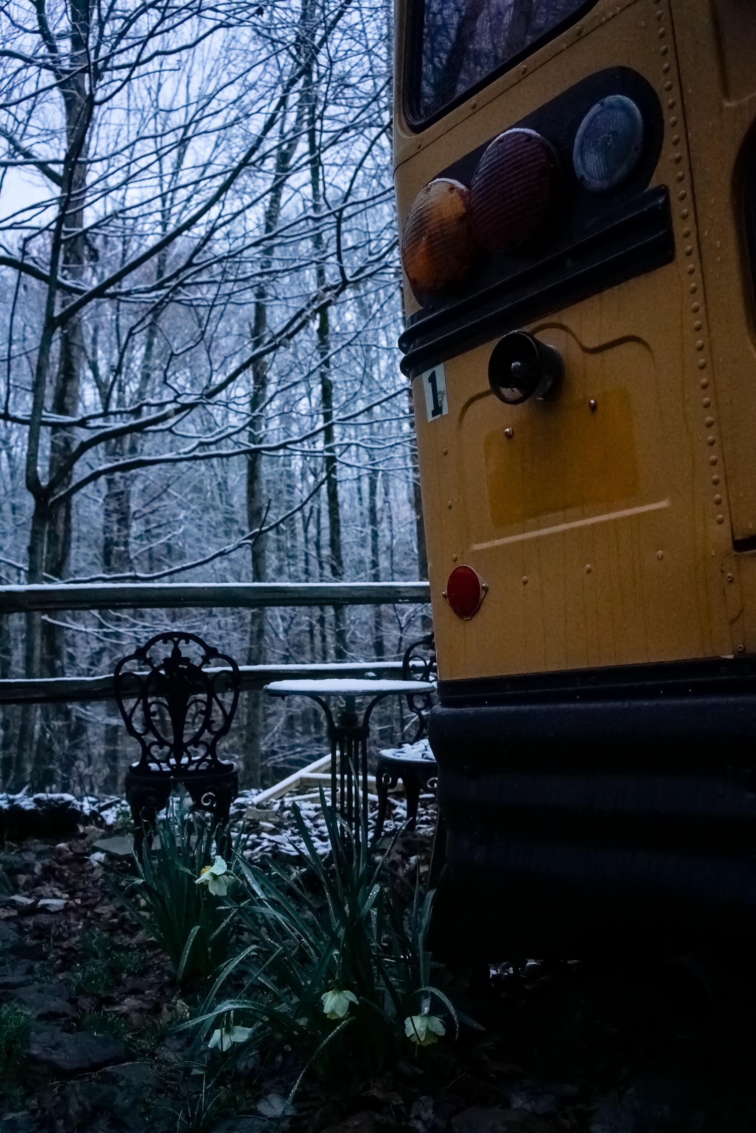 Snow-03790.jpg
