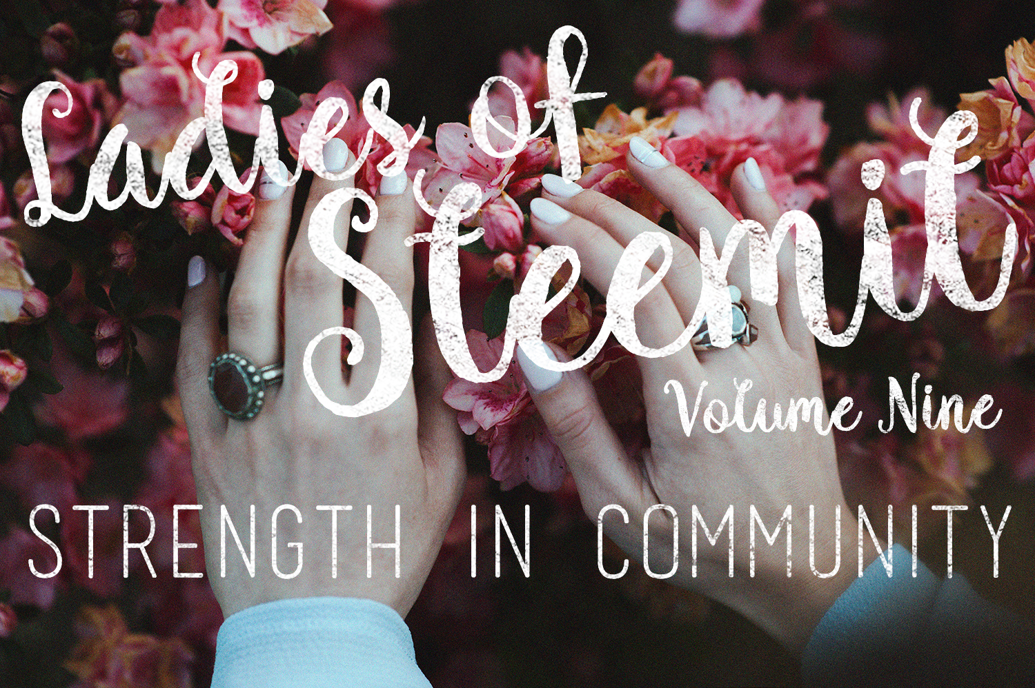 Blog header + brand identity designed for Ladies of Steemit's weekly curation post.