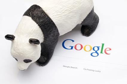 Pandagoogle.jpg