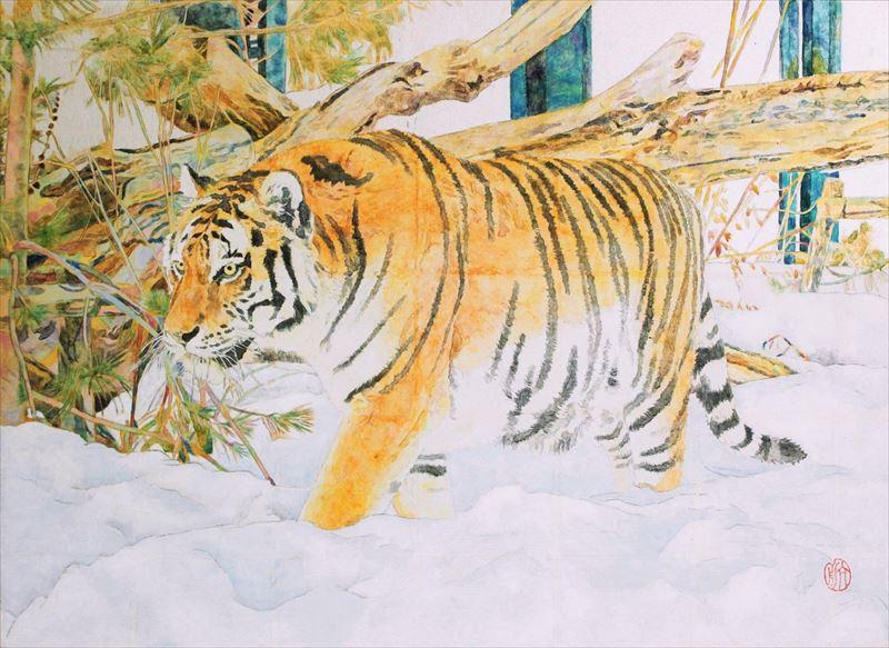 雪中虎 P8