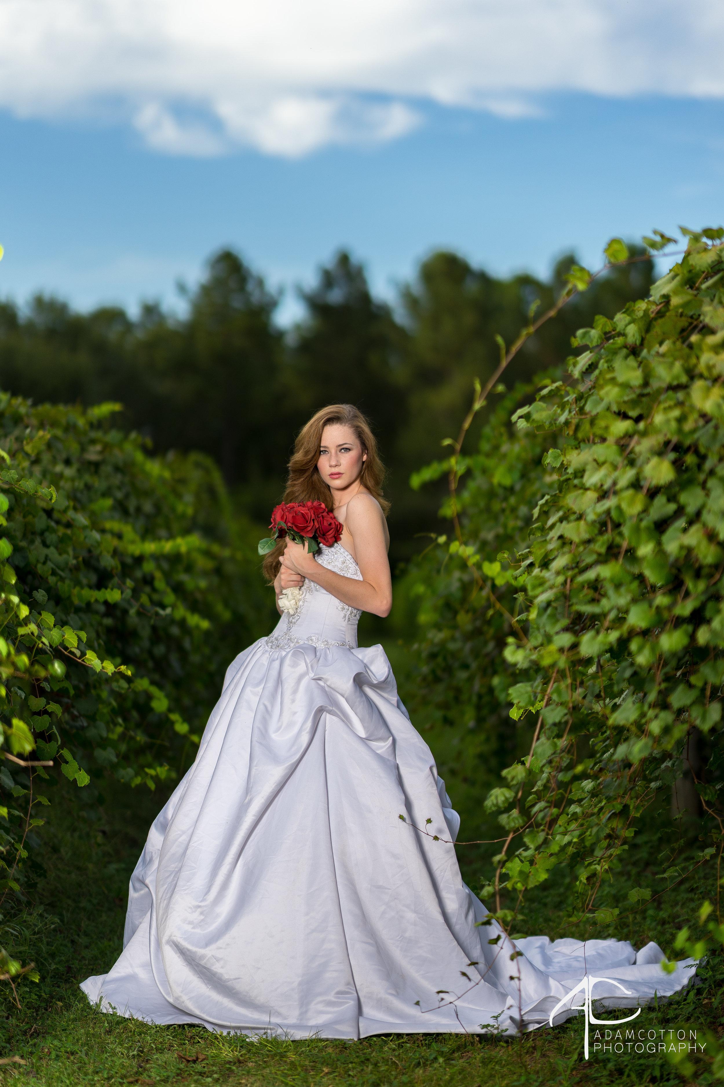 Vineyard shoot,Sony A7II, Monolight w/ beauty dish, 85 GM