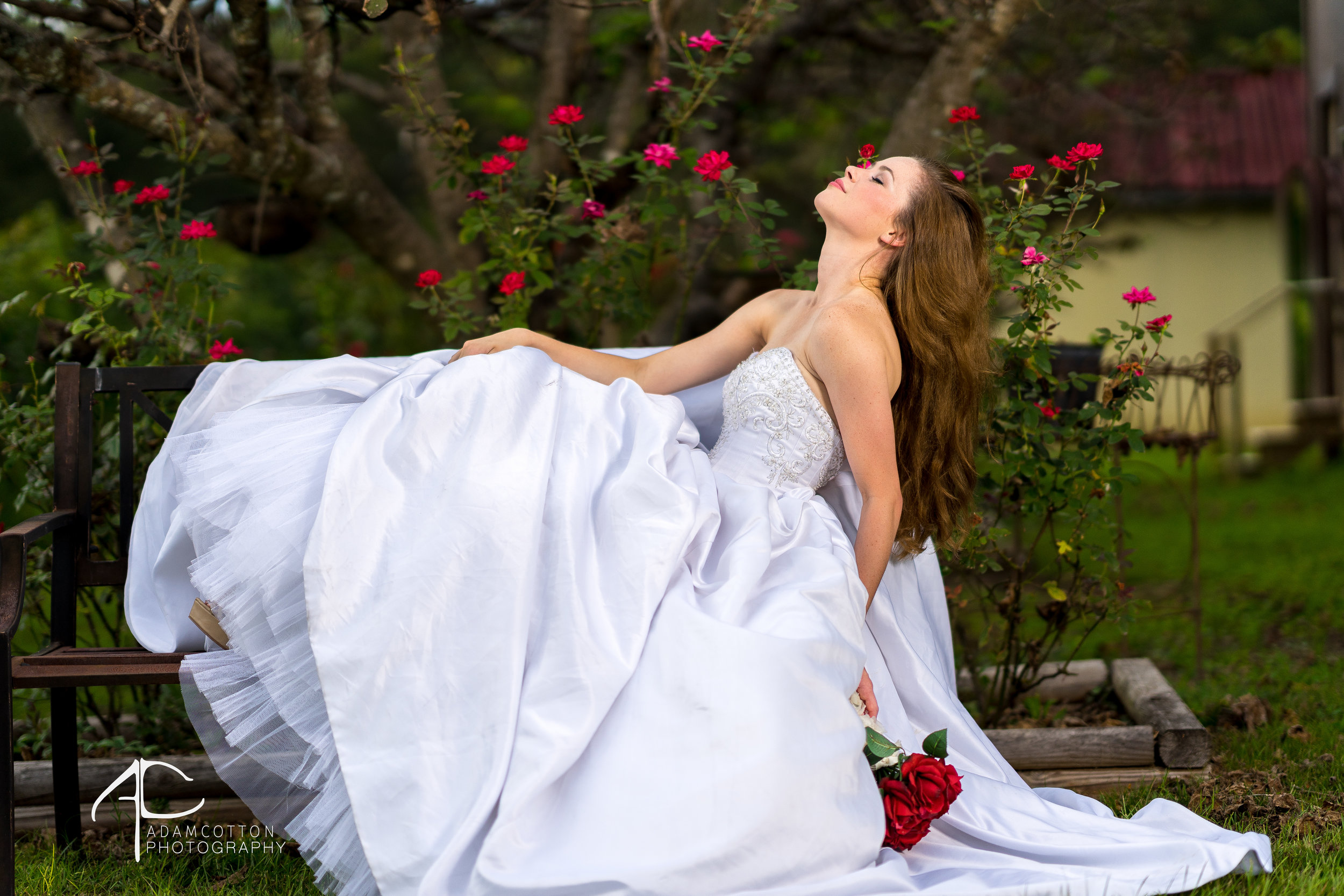 Hannah_bridal_portrait
